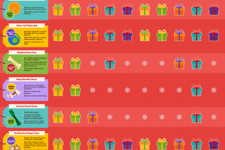 Puppy Treats: Holiday Gifts For Your Companion Infographic