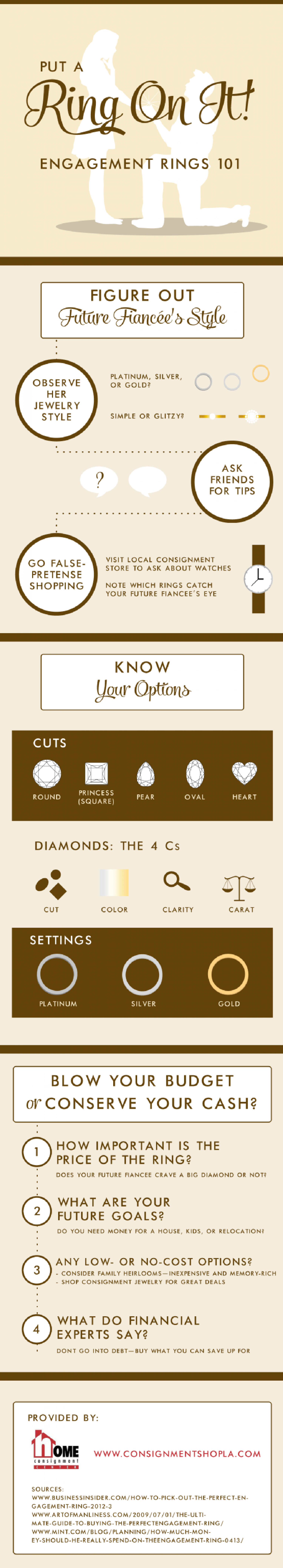 Put a Ring On It! Engagement Rings 101 Infographic