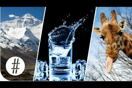 Random Numbers: Mount Everest, Giraffe Tongues & Vodka  Infographic