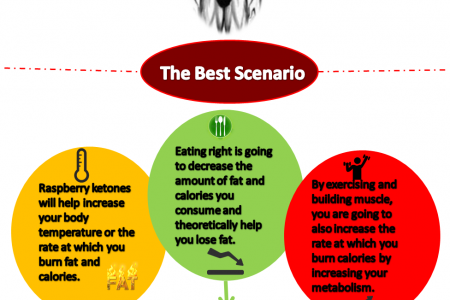 Raspberry Ketone Extract for Weight Loss - History Infographic