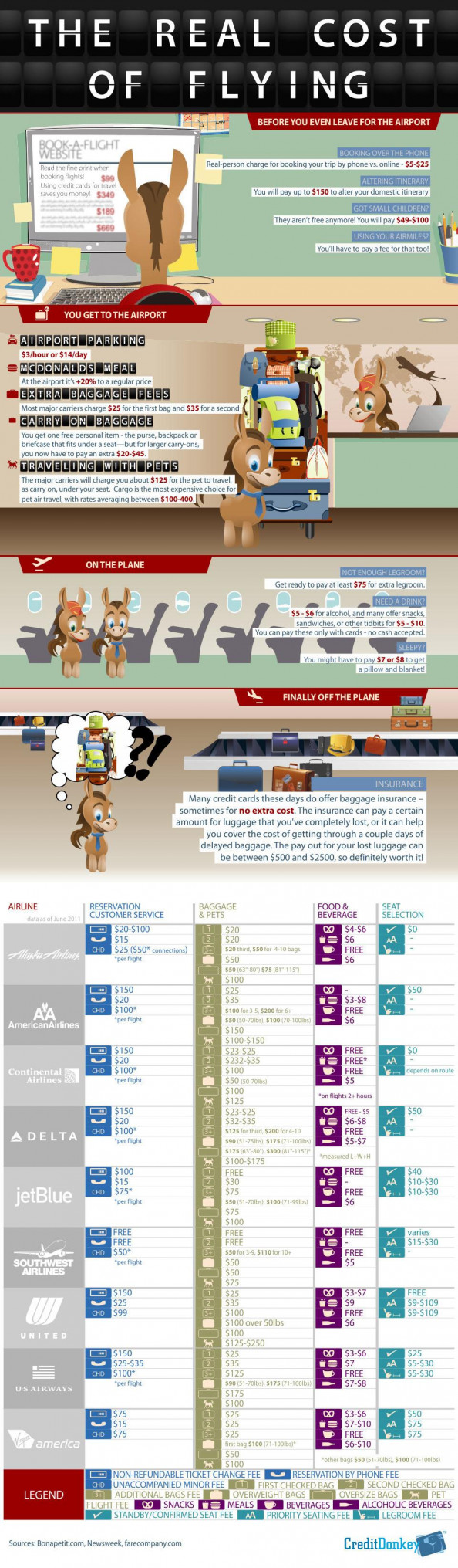 Real Cost of Flying Infographic
