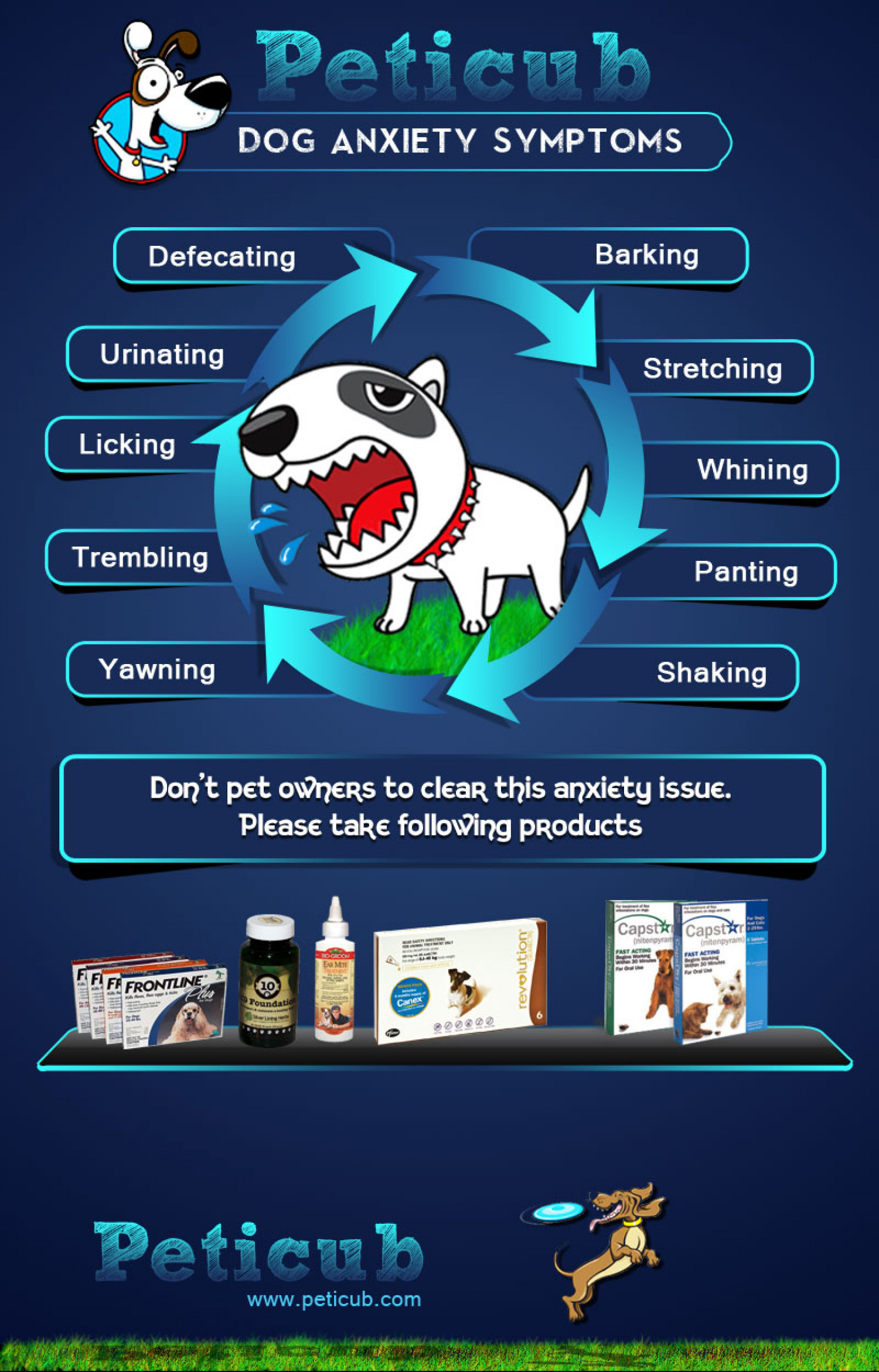 Recognizing Signs Of Dog Anxiety Infographic