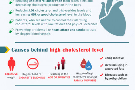 Reduce high cholesterol by buying Vytorin from CanadaDrugStop.com Infographic