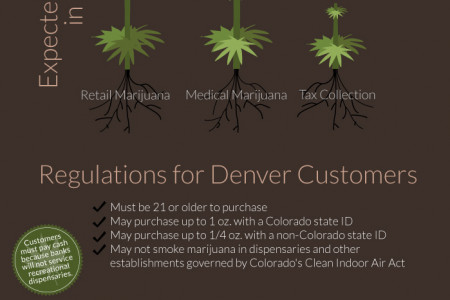 Retail Marijuana: the Cash in Grass Infographic