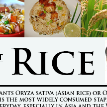 Rice Facts Infographic