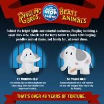 Ringling Brothers Animal Cruelty Exposed Infographic