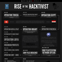 Rise of the Hacktivist Infographic