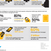 Rise of the mobile Data Lovers Infographic