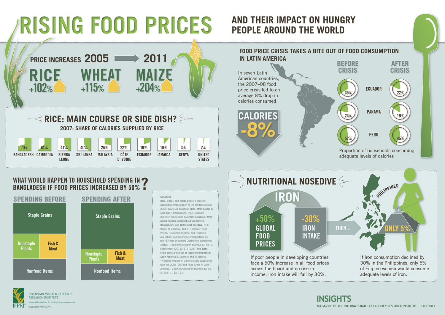 Rising Food Prices, and their impact on hungry people around the world Infographic