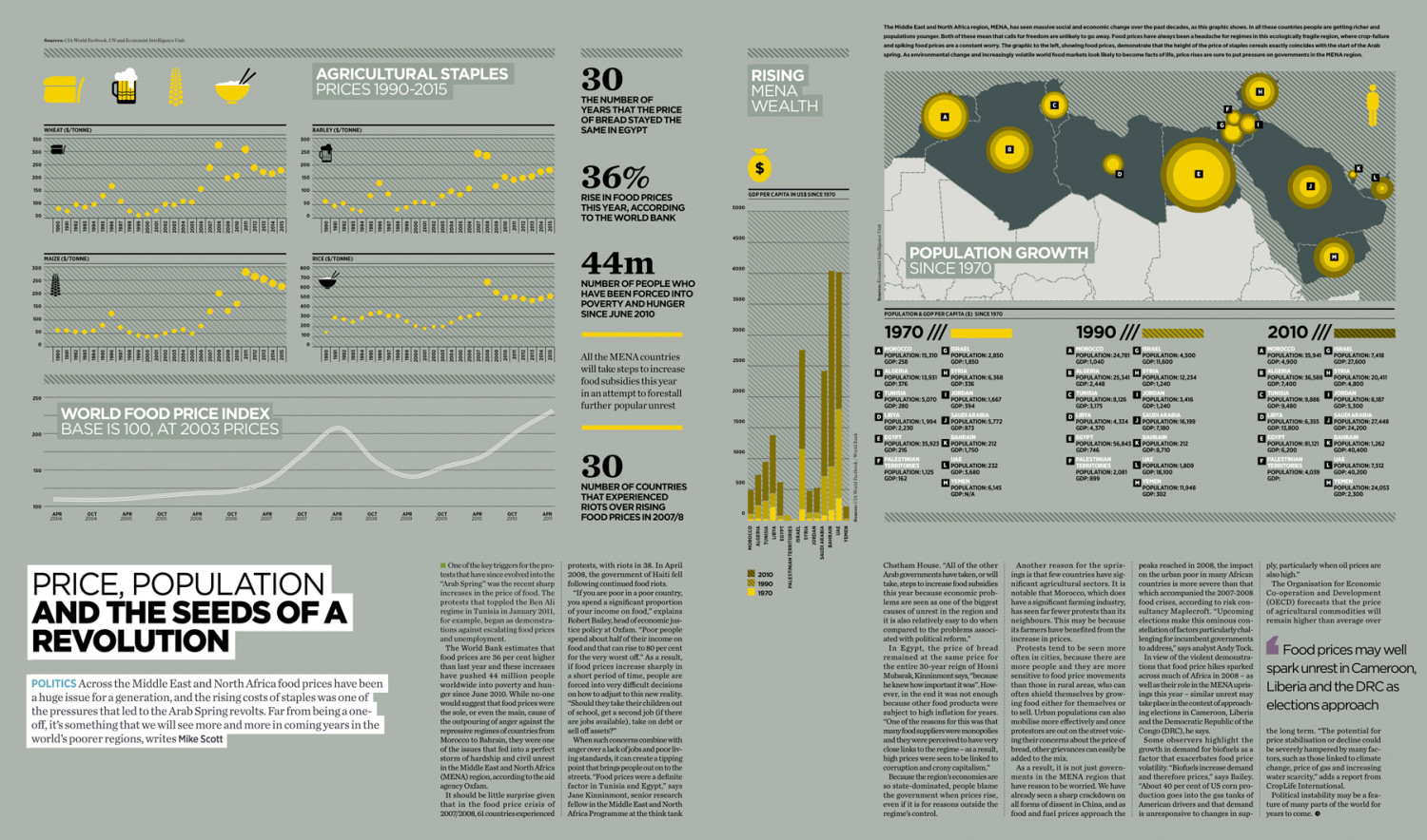 Rising Price of Food in Africa and Middle East Infographic