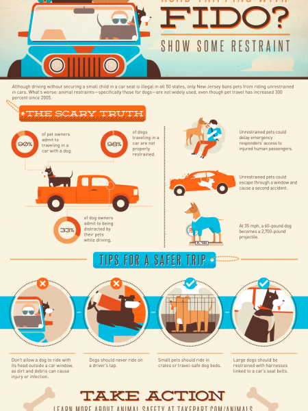 Road-Tripping with Fido? How to Safely Travel With Your Pet Infographic