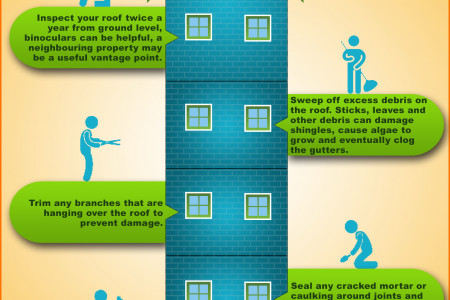 Roof Maintenance Tips Infographic
