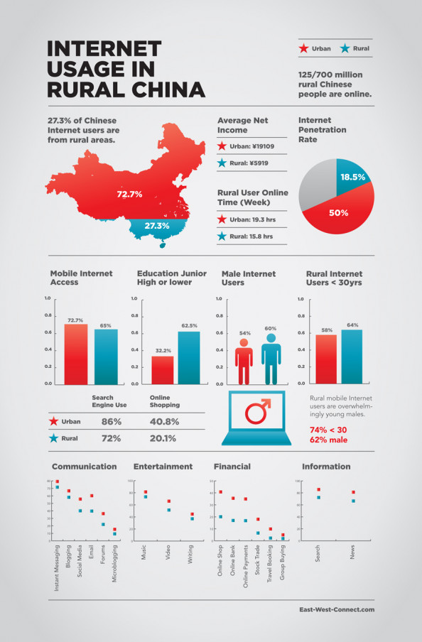 Rural Internet Usage in China Infographic
