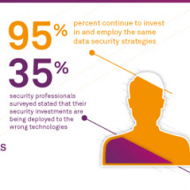 SAFENET SURVEY SHEDS LIGHT ON THE STATE OF THE DATA BREACH Infographic