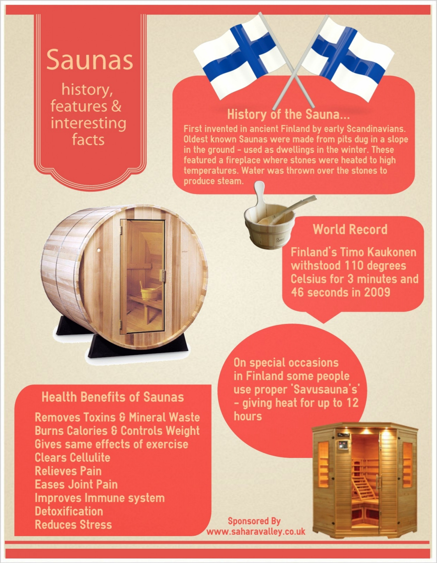 Saunas history, features & facts  Infographic