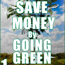 Save Money by Going Green Infographic