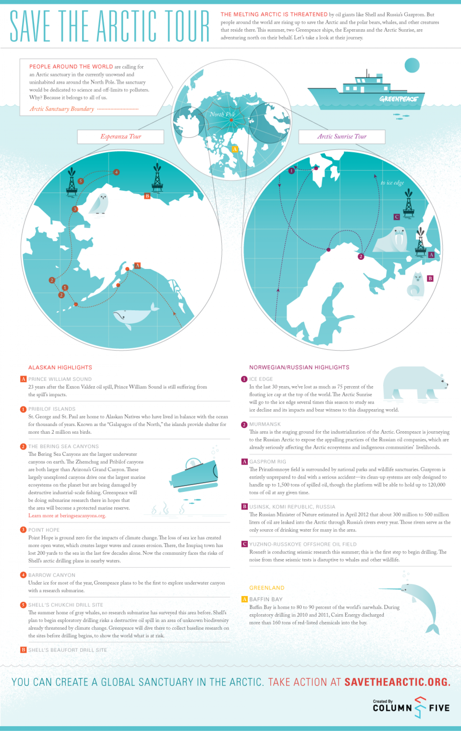 Save The Arctic Infographic