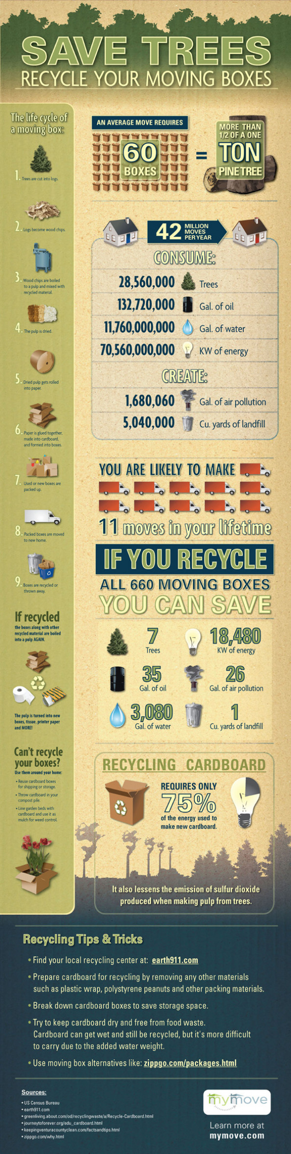 Save Trees: Recycle Your Moving Boxes Infographic