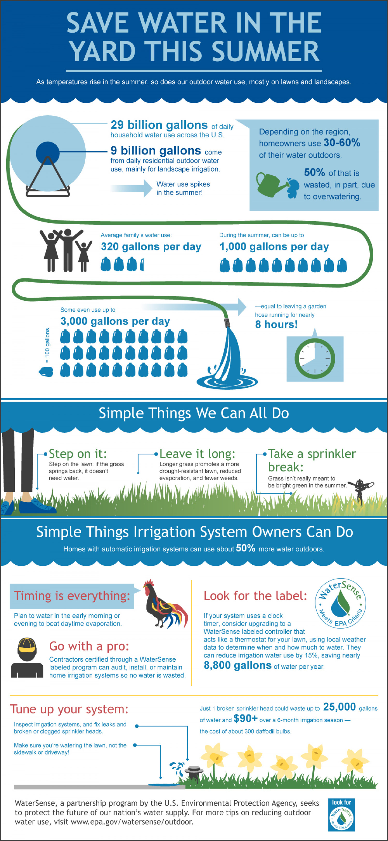 Save Water Summer  Infographic