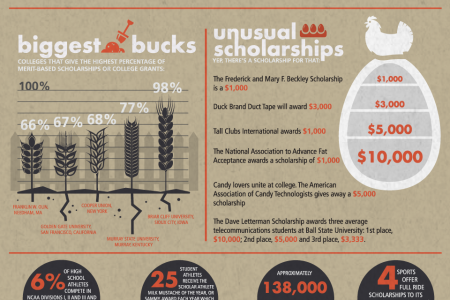 Scholarship Farm: A look at some of the most outlandish scholarships Infographic