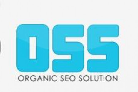 Search engine optimization services Infographic