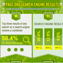 Search Engine Results Infographic