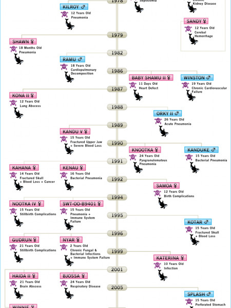 SeaWorld's Timeline of Death Infographic