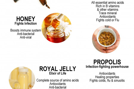 Secrets of the Bees Infographic
