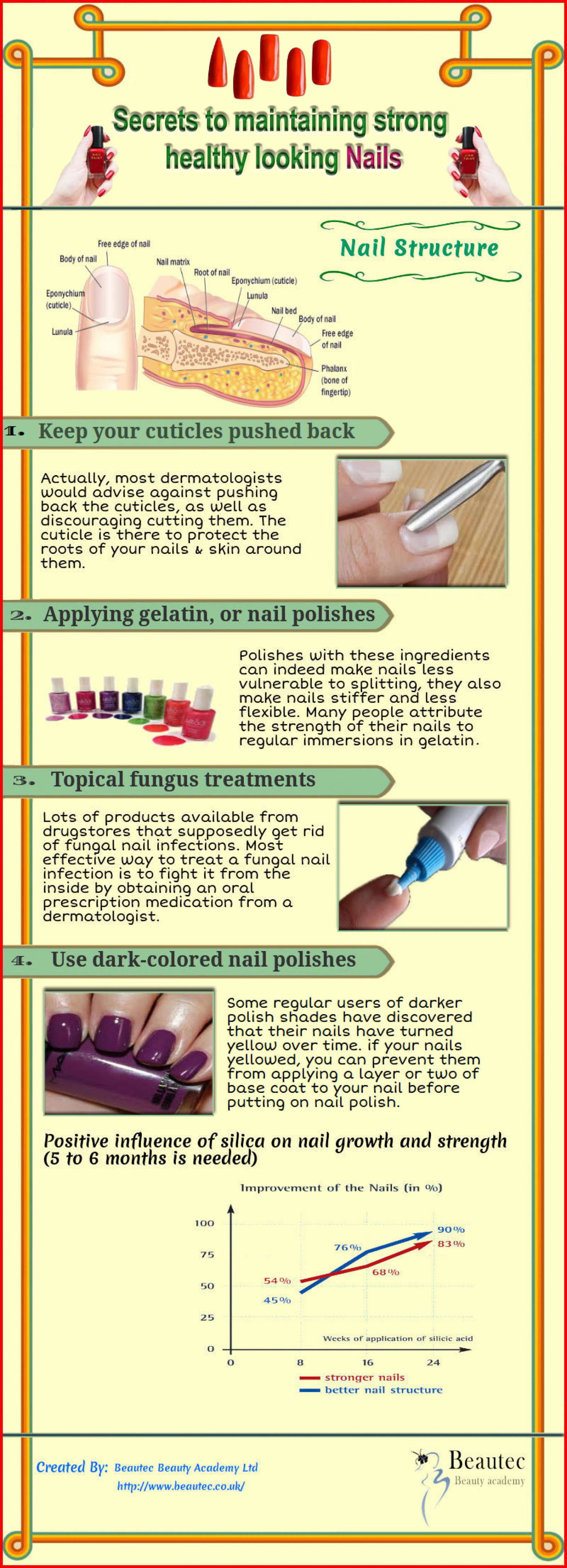 Secrets to maintaining strong healthy looking Nails Infographic