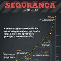 Security on the Internet Infographic