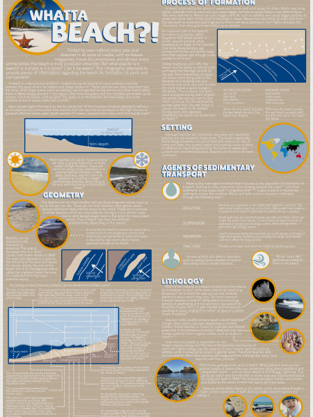 Sedimentary Environments: Beach Infographic