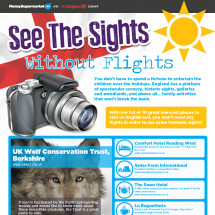 See the Sights without Flights Infographic