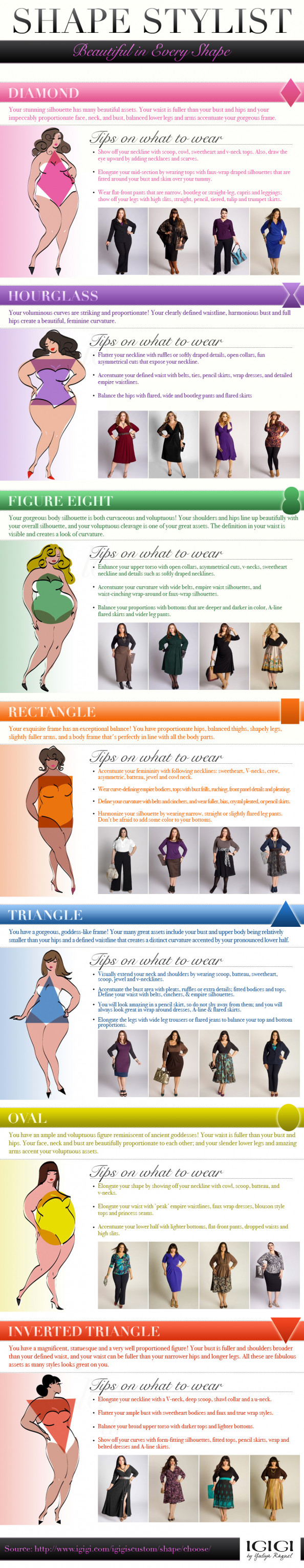 Shape Stylist Infographic