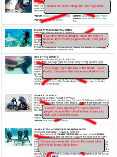 Shark Week In 30 Seconds  Infographic