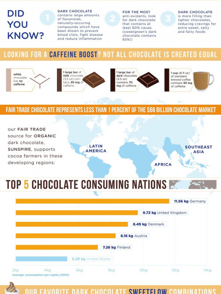 Shedding Light on Dark Chocolate Infographic