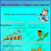 Ship Car or Drive it yourself? Which is better? Infographic