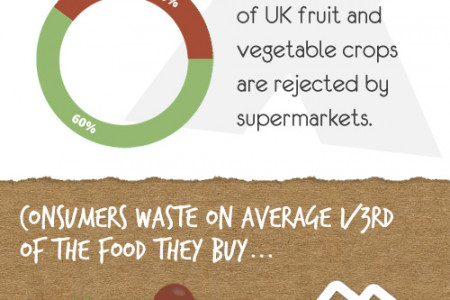 Shocking Facts about Food Wastage Infographic