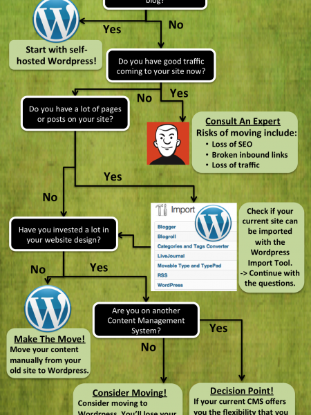 Should I Move To WordPress? Infographic