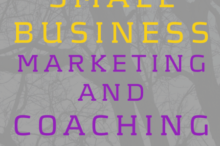 Simple and Easy to Follow Small Business Marketing and Coaching Services Infographic