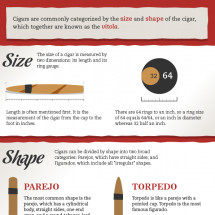 Sizes and Shapes of Cigars Infographic