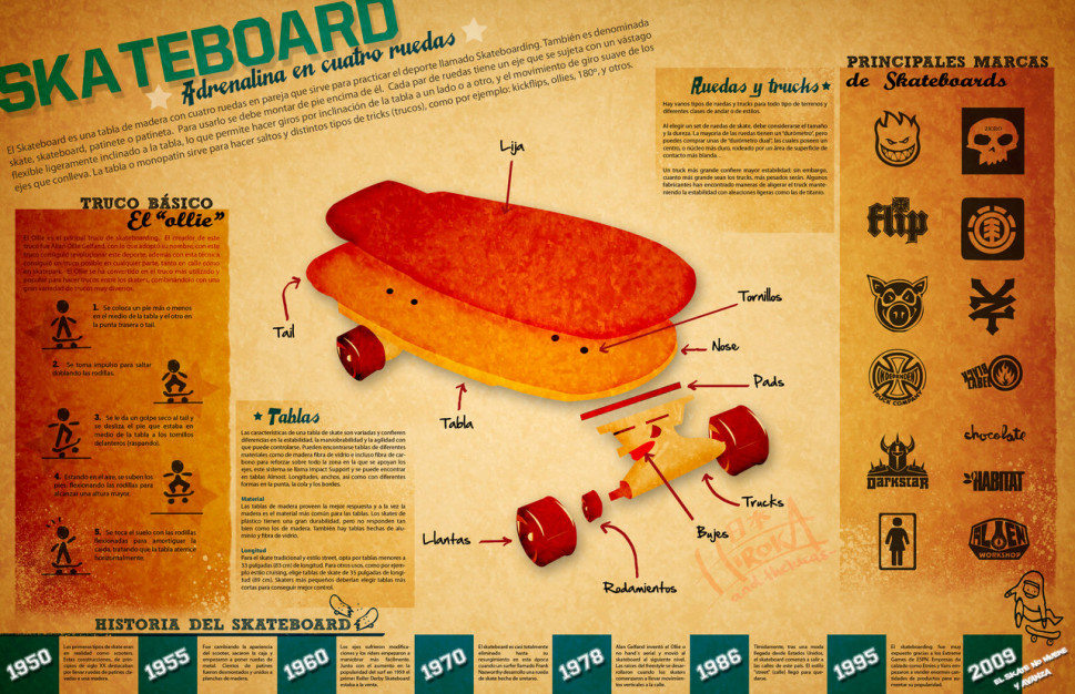 Skateboard  Infographic