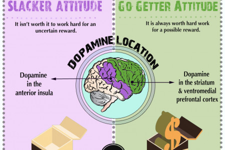 Slacker or Go-Getter? The Dopamine Connection Infographic