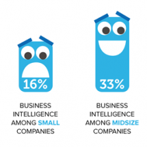 Small Business Intelligence Infographic