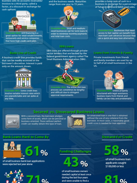 Small Business Loan Infographic Infographic