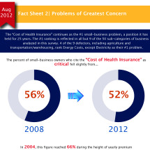 Small Business Problems - Health Insurance Infographic