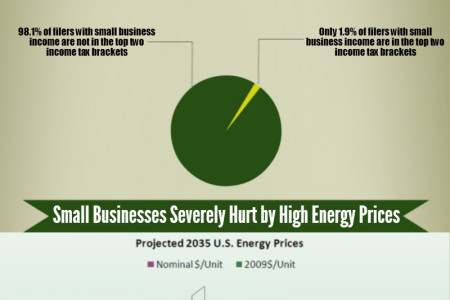 Small Business Worries Infographic
