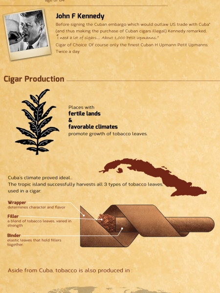 Smoke on this: A Cigar Overview Infographic