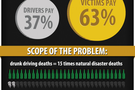 Sobering Effects of Drunk Driving Infographic