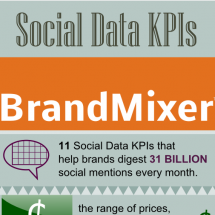 Social Data KPIs by BrandMixer Infographic