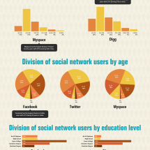 Social Network Demographics Infographic